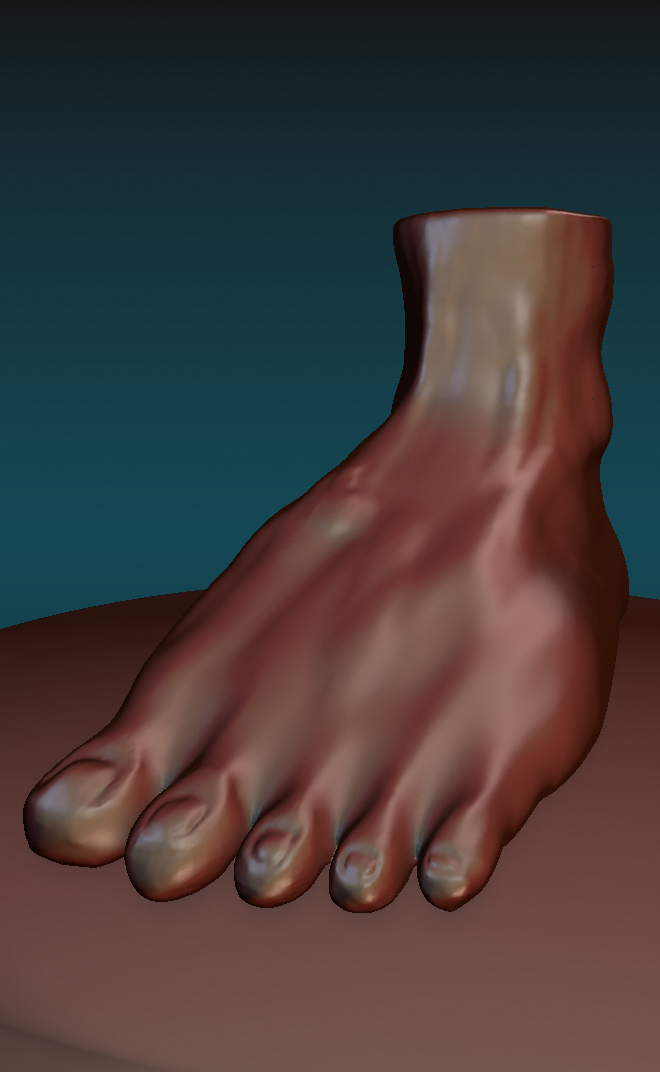 Foot Sculpt